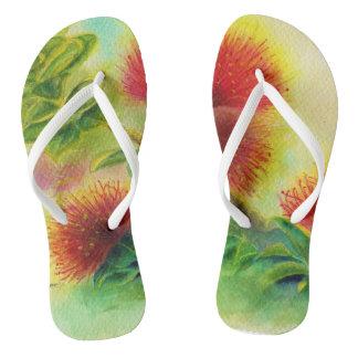 Deslizadores dos chinelos de Malorie Arisumi Ohia