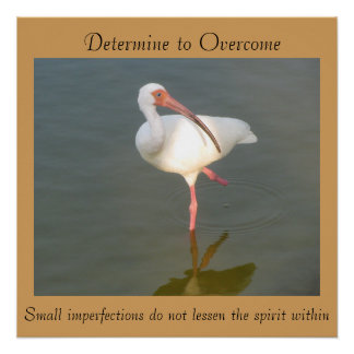 "Determine superar - 20"" x 20"" poster poster perfeito"