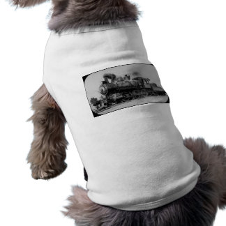 Detroit, Caro, e motor 7 da estrada de ferro de Sa Camisa Sem Mangas Para Cachorro