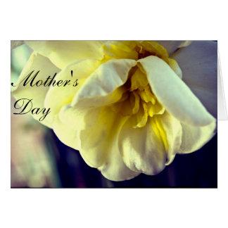 Dia da mãe do Daffodil do narciso Cartão Comemorativo