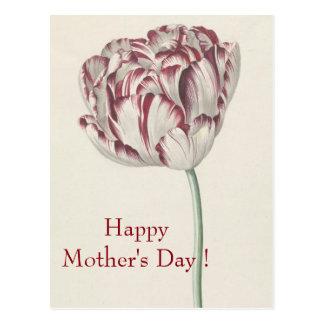 Dia das mães - cartão branco & vermelho do vintage