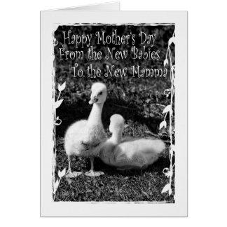 Dia das mães dos gêmeos novos cartão comemorativo
