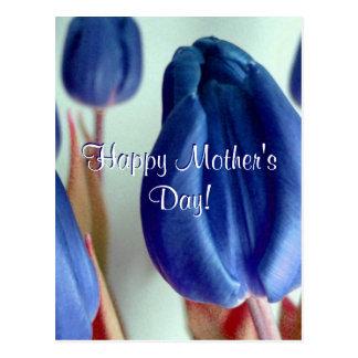 Dia das mães feliz BlueTulips