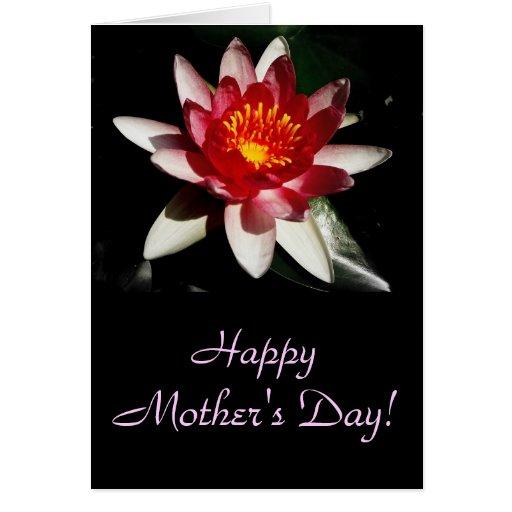 Dia das mães feliz! cartões