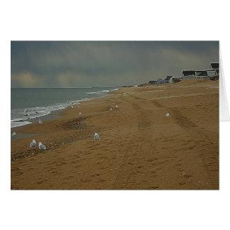 Dia de OBX na praia 5 x cartão 7