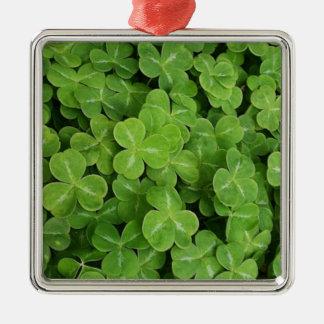Dia do St. Patricks - trevos Ornamento Quadrado Cor Prata