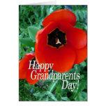 Dia feliz das avós - flores da papoila cartões