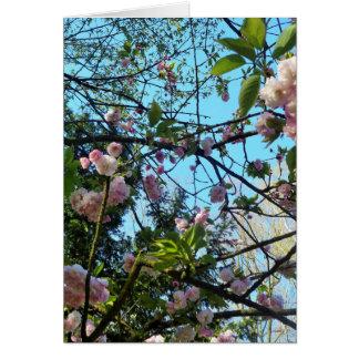 Dia feliz de Mother´s, flor de cerejeira Cartão Comemorativo
