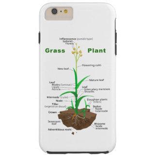 Diagrama da planta de Graminoids da grama Capas iPhone 6 Plus Tough