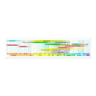 Diagrama de fases cura sem fôlego impressão de canvas esticada