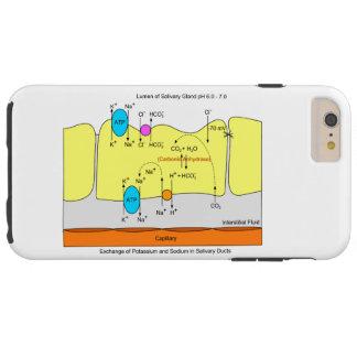Diagrama do canal da secreção da glândula do capa tough para iPhone 6 plus