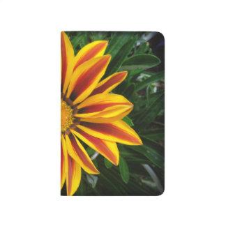 Diário Foto alaranjada bonita da flor de Sun