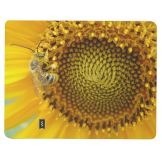 Diário Jornal da abelha ocupada