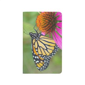 Diário Jornal da borboleta de monarca
