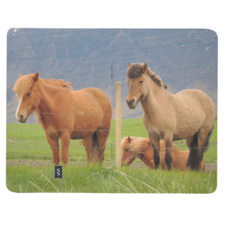 Diário Livro de nota com cavalos e imagem islandêses das