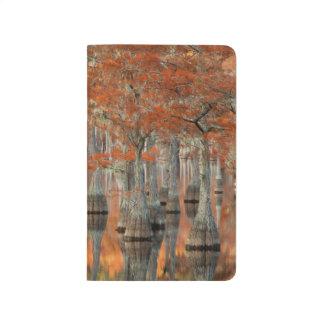 Diário Parque estadual das árvores de Cypress   George