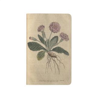 Diário Prímula do Lilac