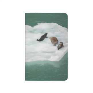 Diário Selos em um jornal do iceberg