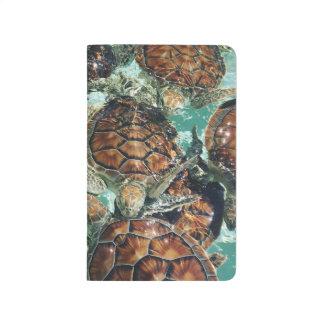 Diário Tartarugas tropicais (fotografia de Kimberly
