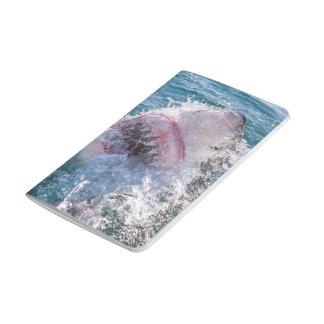 Diário Tubarão na água