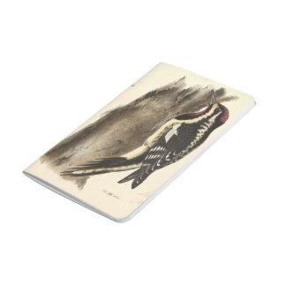Diário Woodpeckers