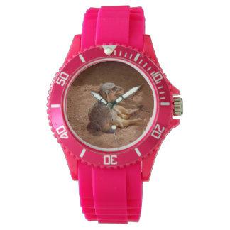 Dias preguiçosos de Meerkat, relógio cor-de-rosa