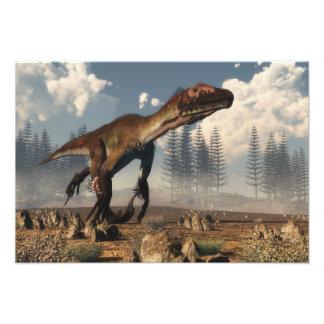 Dinossauro de Utahraptor no deserto Impressão De Foto