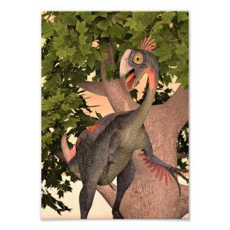 Dinossauro Gigantoraptor Artes De Fotos