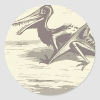 Dinossauro: Rhamphorhynchus Adesivo