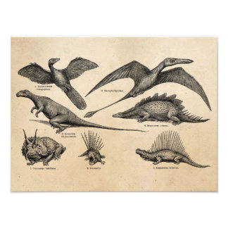 Dinossauros retros da ilustração do dinossauro do  impressão de foto