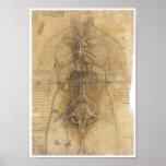 Dissecção dos órgãos de uma mulher, da Vinci Pôsteres