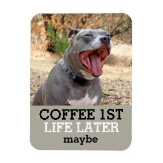 Do café ø da vida ímã de Pitbull mais tarde