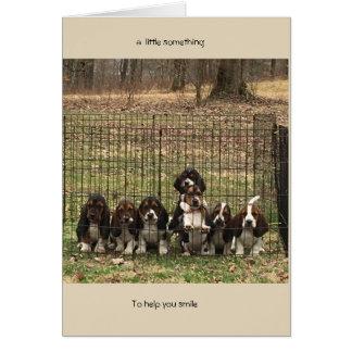 do elogio cão de Basset do cartão acima