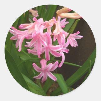 "Do ""flores primavera de Staten Island"" Adesivo"