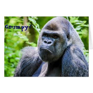Do gorila do elogio cartão acima