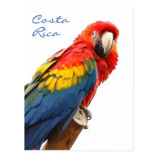 Do Macaw escarlate do cartão de Costa Rica Cartão Postal