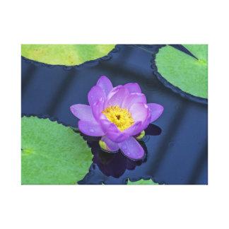 Do roxo impressão das canvas waterlily
