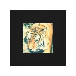 Do tigre canvas próximas acima