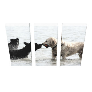 Dogged Determination Stretched Canvas Prints