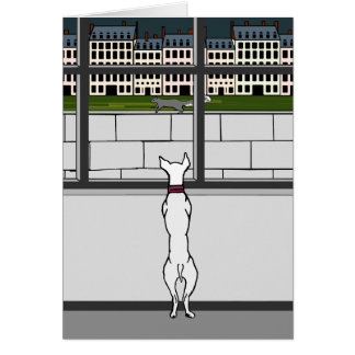 Doggy no cartão vazio da janela da cidade