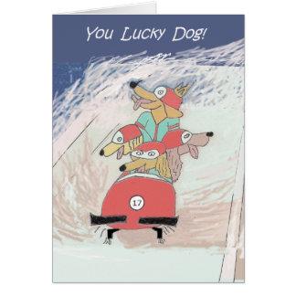 Dogsled - cartão de aniversário