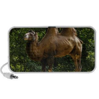 Dois auto-falante do Portable do camelo de Humped Caixinhas De Som De Viagem