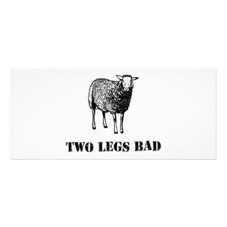 Dois carneiros do mau dos pés modelo de panfleto informativo