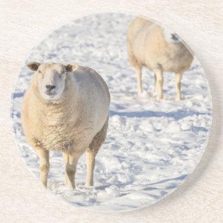 Dois carneiros que estão na neve durante o inverno porta-copos de arenito
