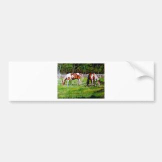 Dois cavalos da pintura que pastam adesivos