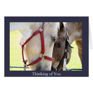 Dois cavalos que pensam de você cartão
