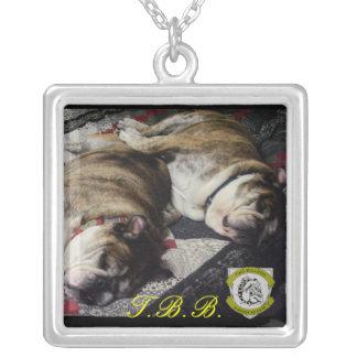 Dois colar personalizada da marca BFF do buldogue