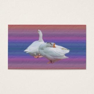 dois gansos brancos no fundo extravagante cartão de visitas