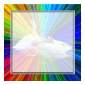 dois gansos brancos no fundo muito extravagante