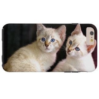 Dois gatinhos Bobtail do ponto do gato malhado de Capas iPhone 6 Plus Tough
